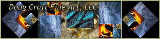 JPG file banner for Doug Craft Fine Art, a website showing fine art collage photomontage paintings microphotographs panorama landscapes and experimental photos inspired by the Golden Ratio, Sacred Geometry, and the fractal structure of nature